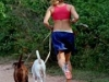 joggen-met-honden