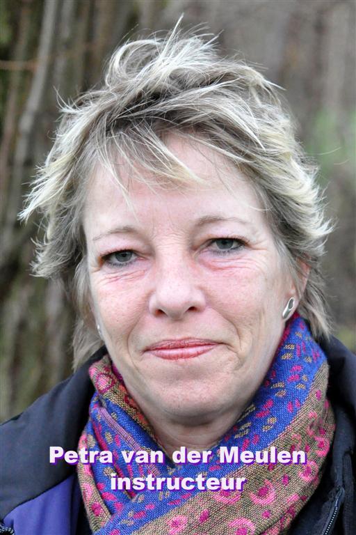 Petra van der Meulen